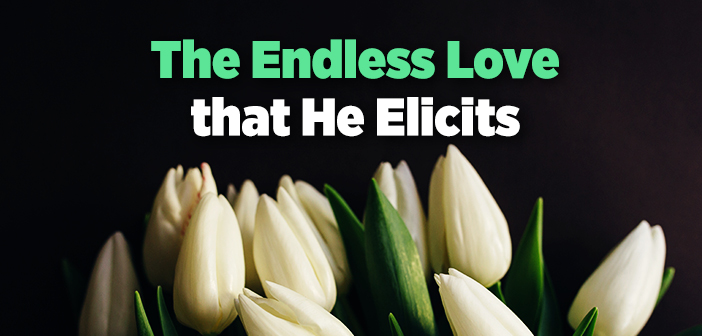 The Endless Love that He Elicits